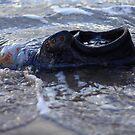 Derrynane - Abondoned Shoe by Peter Sweeney