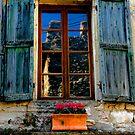 Window with Geranium by hans p olsen