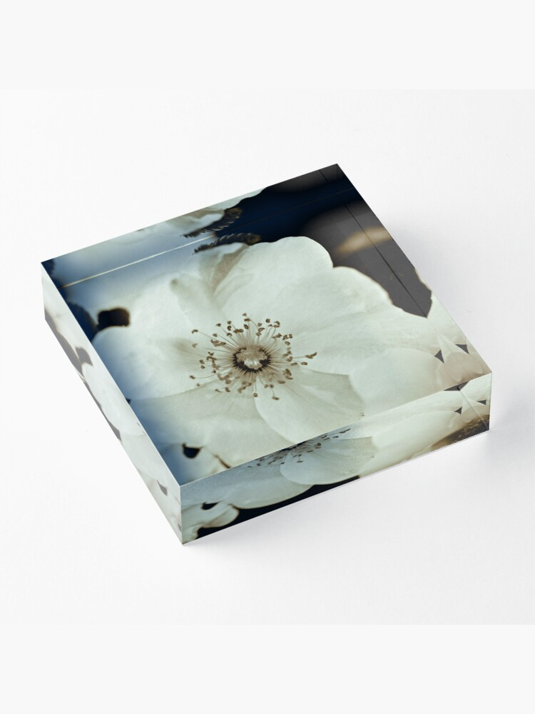 Alternate view of Wild Roses Acrylic Block