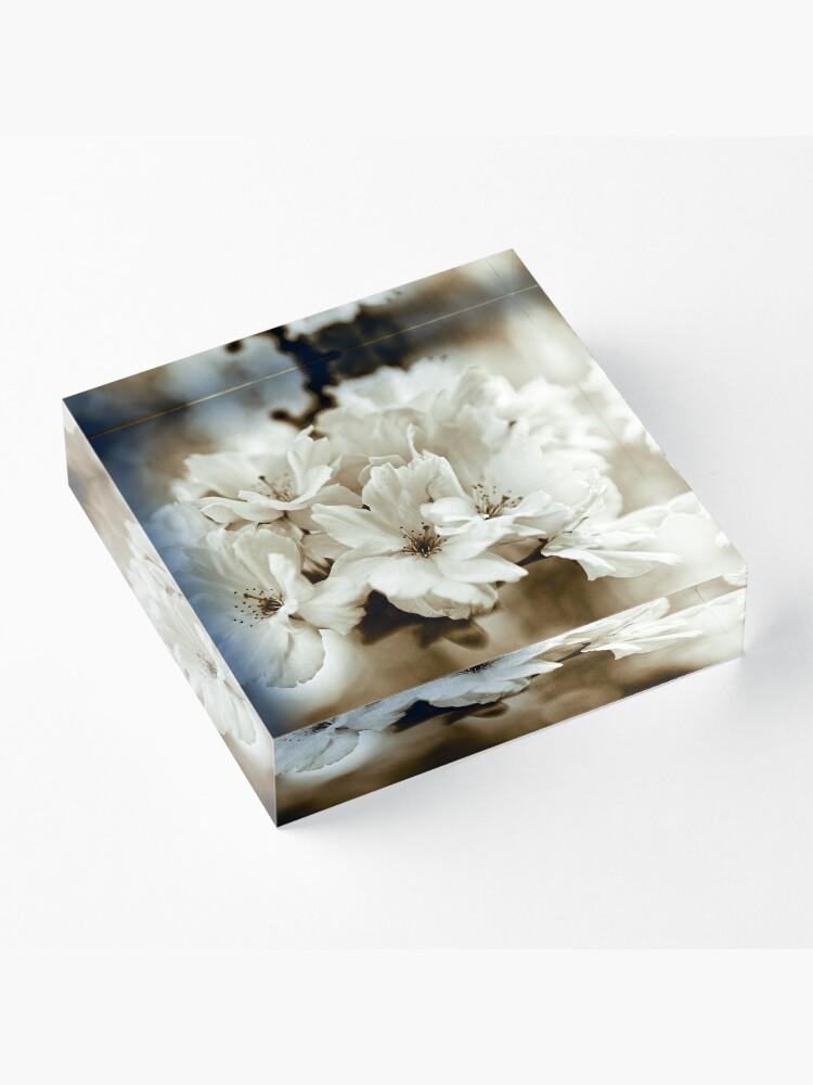Alternate view of Sakura Acrylic Block