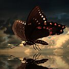 Le Butterfly by believer9