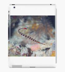 Naia Pipefish iPad Case/Skin
