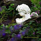 The guardians garden edit by PJS15204