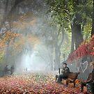 Benches by Igor Zenin