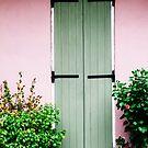 Ode zu Pink und Grün von Bethany Helzer