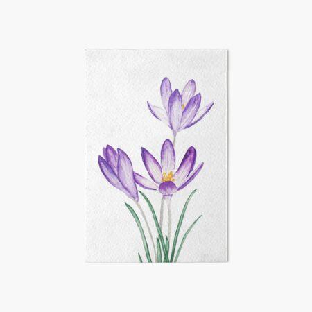 purple crocus flower watercolor  Art Board Print
