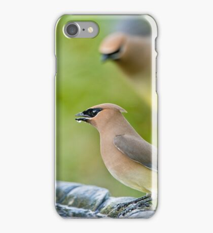Cedar Waxwings in Spring iPhone Case/Skin