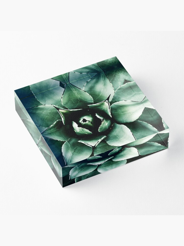 Alternate view of Agave Parryi (Tequila Agave) Acrylic Block