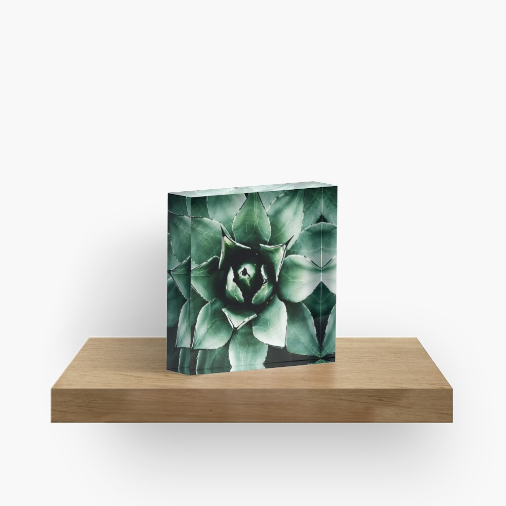 Agave Parryi (Tequila Agave) Acrylic Block