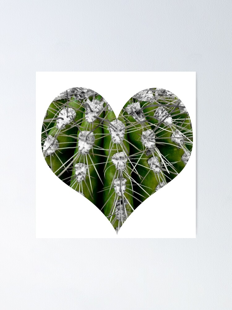 Alternate view of Prickly Cactus Poster