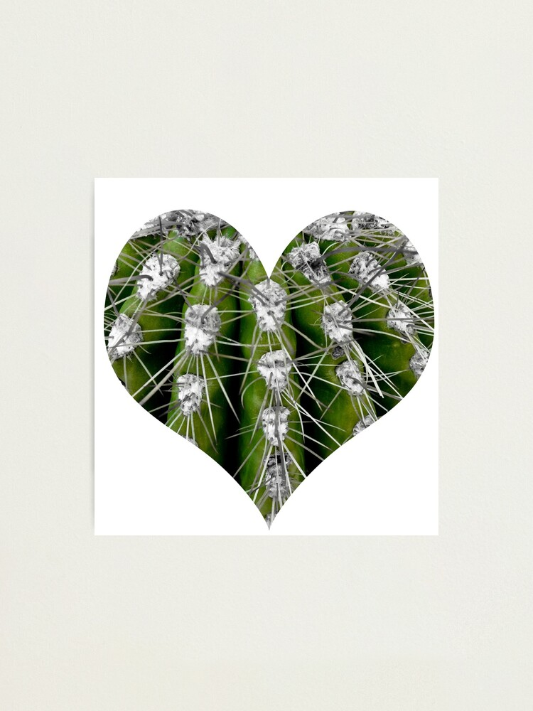 Alternate view of Prickly Cactus Photographic Print