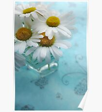 Daisies on a blue background Poster