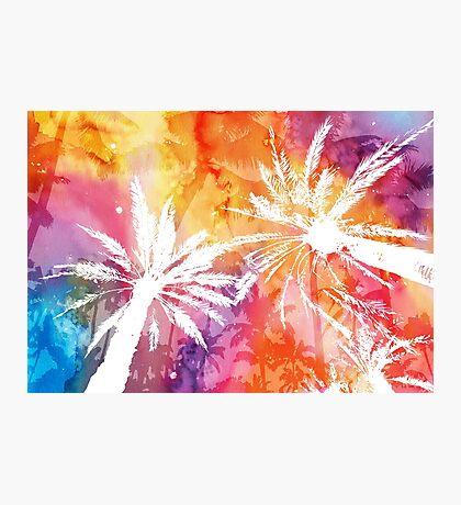 Tropical summer Impression photo