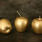 golden apples by dagmar luhring