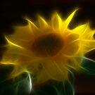 Fractalised Sunflower by Jeremy Owen