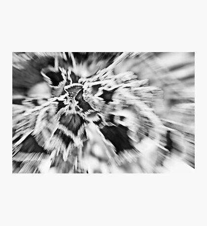 Zoom Burst Black and White Photographic Print