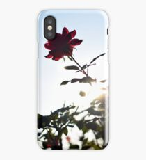 Rose and Sun -- Color iPhone Case