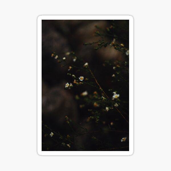 Moody Flowers Sticker