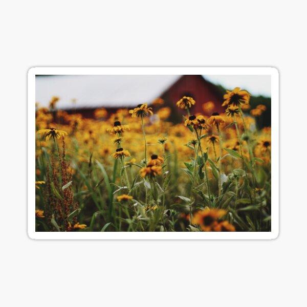 Barn Flowers Sticker