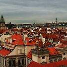 View over Prague by Anne-Marie Bokslag