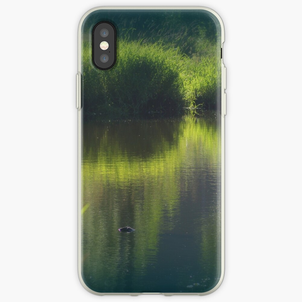 turtle swimming away at Trojan pond, near Goble, Oregon iPhone Case & Cover