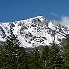 Snow Covered Mount Tallac by Jared Manninen