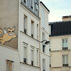 Miaow by Laura Cronin