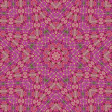 Hydrangea Kaleidoscope by karimala
