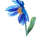 Blue Meconopsis Poppy by Pat Yager