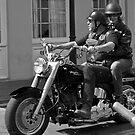 Ride by Judith Oppenheimer