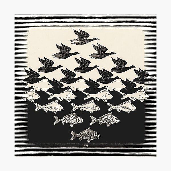 Sky and Water I - Maurits Cornelis Escher Photographic Print