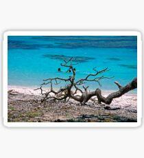 Island Life Sticker