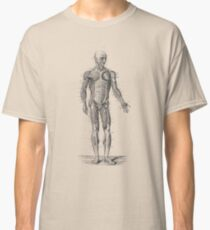 Human Muscle System - Vintage Anatomy Classic T-Shirt