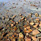 Rocks to the Horizon (V1) by Stephen Mitchell