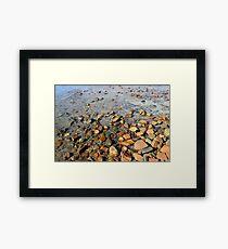 Rocks to the Horizon (V1) Framed Print