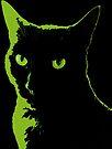 Black Cat 5 by Etakeh