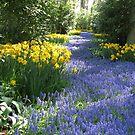 Die Blumengasse, Keukenhof Gardens, 2007 von BlueMoonRose
