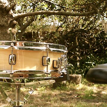 Snare Drum in the yard. by ferylbob