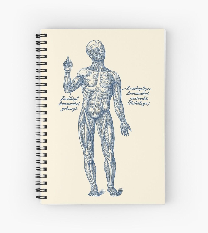 Cuadernos de espiral «Sistema Muscular del Brazo - Diagrama Alemán ...