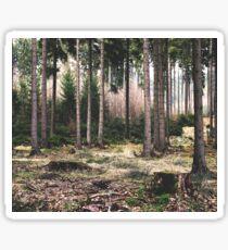A Quiet Forest Sticker