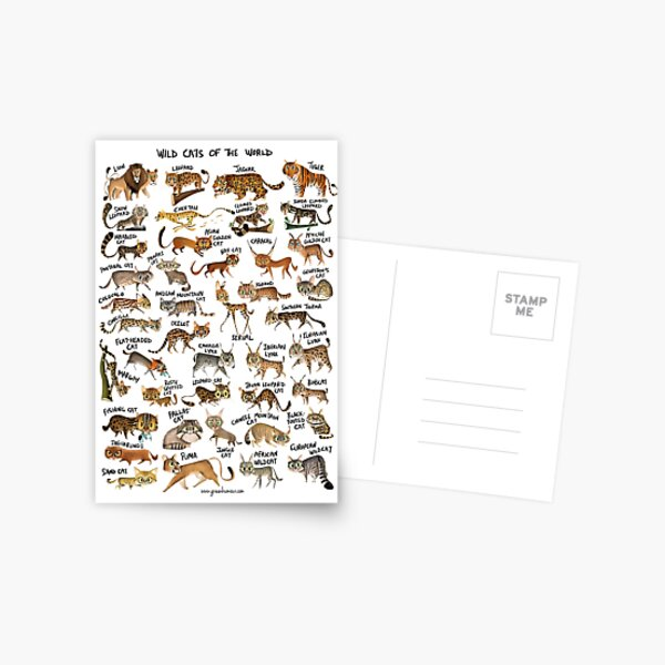 Wild Cats of the World Postcard