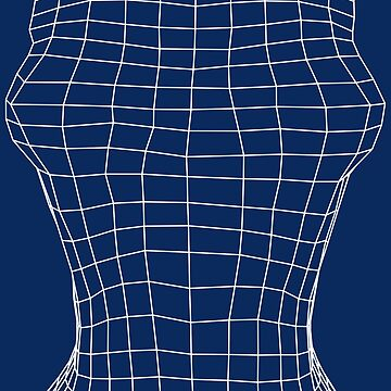Female Torso Wireframe by Malaclypse235