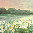 SUNSET OVER DAISY-MEADOW - A Dream of Peace may fill your Heart by RubaiDesign