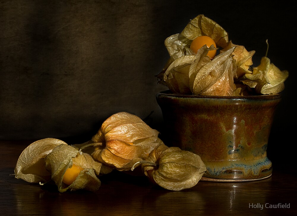 Cape Gooseberries by Holly Cawfield