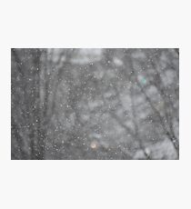 Snow in Boone Photographic Print