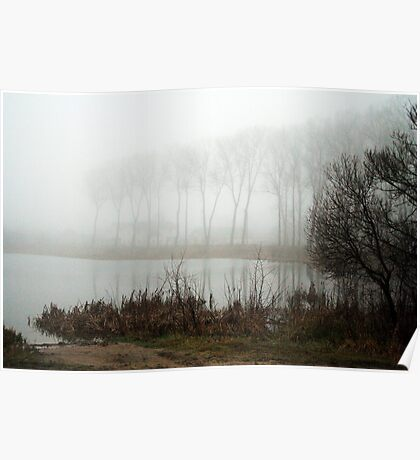 Foggy foggy morning Poster