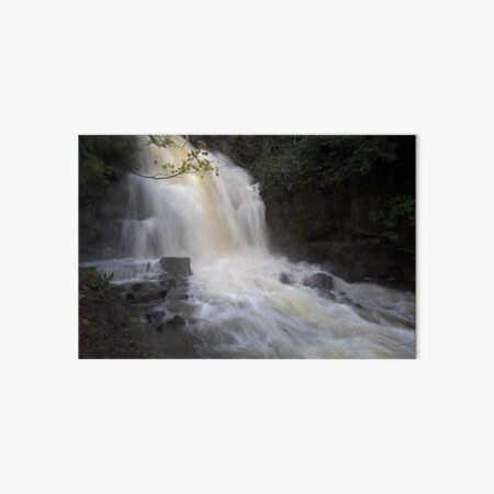 Harmby waterfall in full spate, Yorkshire Dales National Park, UK Art Board Print