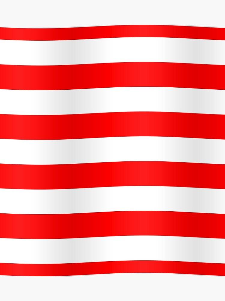 Donde de roja blanca roja es y bandera