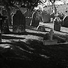 Death Casts It's Shadow by rorycobbe