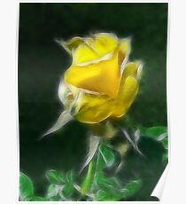 Yellow Rose 2 Intense Poster
